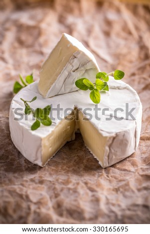 Camembert cheese on a rustic crumpled paper background