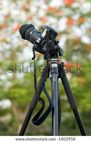 Camera on tripod in garden - stock photo