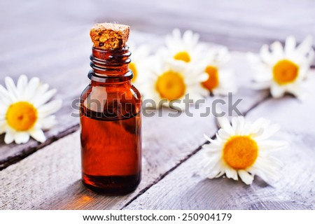 camomille oil - stock photo