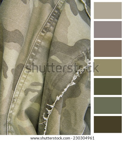 camouflage cloth complimentary color chart selection - stock photo
