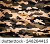 Camouflage pattern, background on February 23 - stock vector