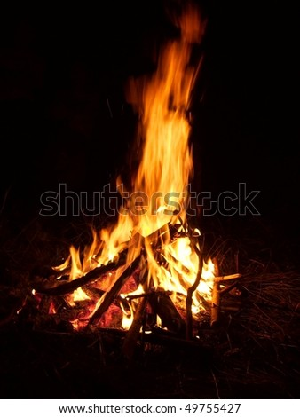 Camp fire burning in the night - stock photo