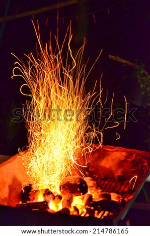 Camp fire in the night - stock photo