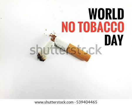 no tobacco essays 100% free papers on no tobacco essays sample topics, paragraph introduction help, research & more class 1-12, high school & college.