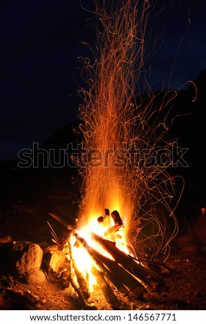 Campfire, bonfire in the forest - stock photo