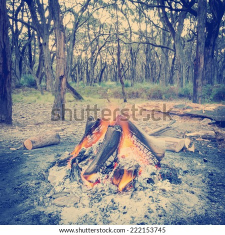 Campfire burning bright in the forest at dusk with Instagram style filter - stock photo