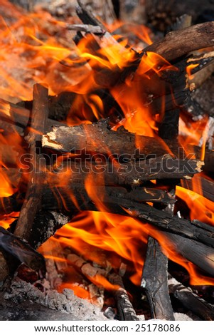 Campfire close-up - stock photo