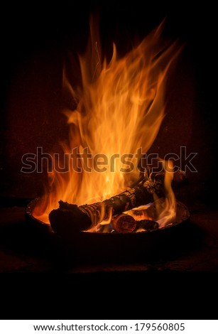 campfire: high body of flame in the darkness
