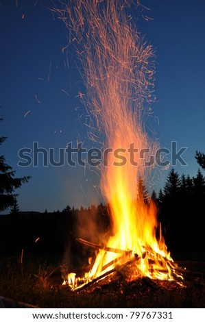 campfire in the forest - stock photo