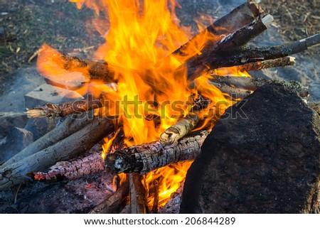 Campfire near the coastline - stock photo