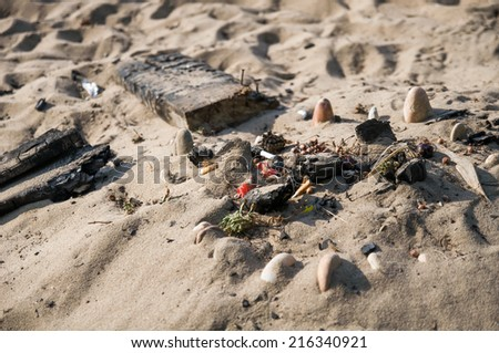 campfire on the beach - stock photo