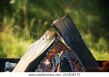 Campfire on the day in garden - stock photo