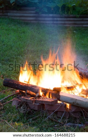 Campfire with Rising Orange Flames on Green Grass