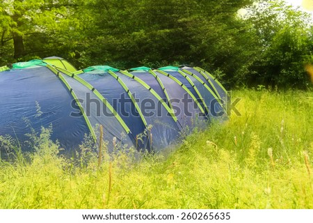 Campground in the morning forest - stock photo