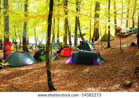 Camping area with multi-colored tents in forest - stock photo