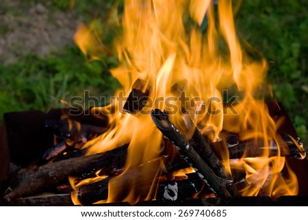 Camping bonfire with flame and firewood in the dark closeup view - stock photo