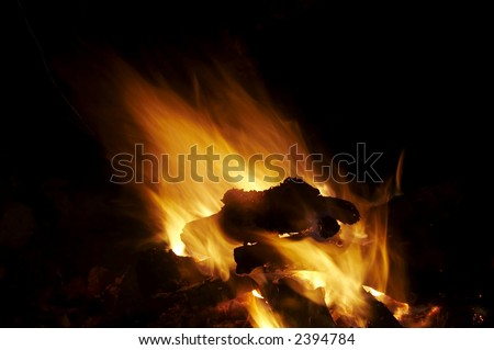 Camping fire on the black background