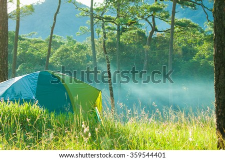 camping in jungle - stock photo