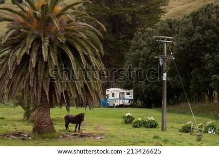camping scene in a roadside farm paddock in rural New Zealand  - stock photo