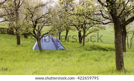 Camping tend in grass in spring garden or blossoming orchard.