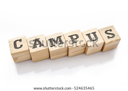 CAMPUS word made with building blocks isolated on white