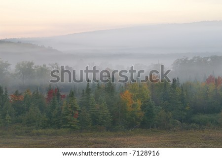 Canaan Valley State Park West Virginia on a Foggy Autumn Morning - stock photo