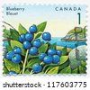 CANADA - CIRCA 1992: A stamp printed in Canada, shows Blueberry, circa 1992 - stock photo