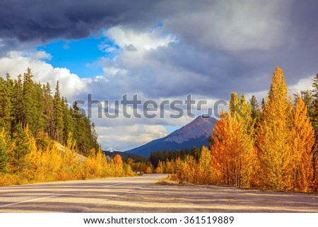 Canada, Rocky Mountains. Road in Banff National Park. Great orange and yellow autumn forest illuminated by the sunset - stock photo