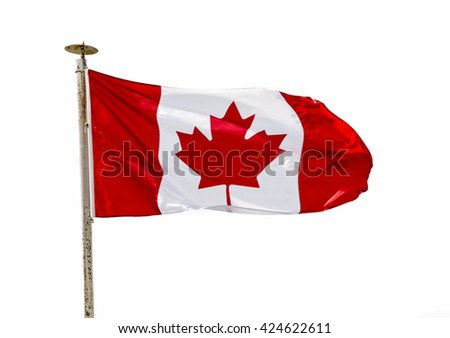 Canadian Flag in the wind over white background (cutout) - stock photo