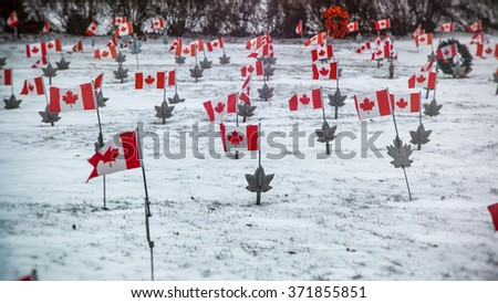 Canadian Military Cemetery Winter. Canadian flags in a military cemetery in winter - stock photo