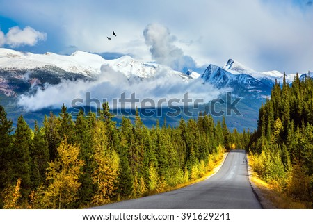Canadian Rockies. Fine September day. The highway passes among mountains and the turned yellow woods