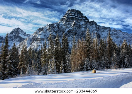 Canadian rocky mountain by a lake - stock photo