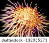 cancer cell with high details - stock photo