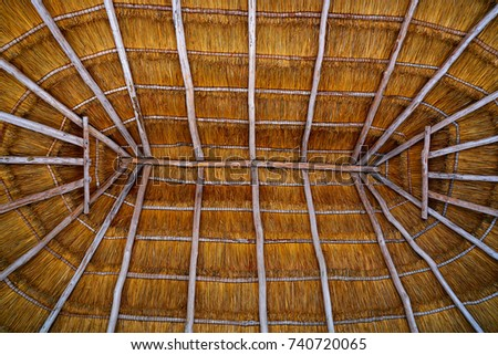 Cancun Palapa Roof Hut Detail With Dried Grass Roofing In Mexico