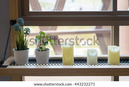 Candle and growing plants in little jardiniere at window in morning with sunlight