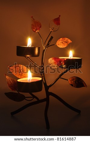 Candles in a candlestick with leaves burn. - stock photo
