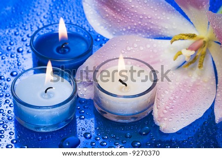 Candles with flower on blue background - stock photo