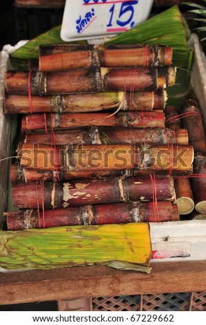 Cane in Thailand - stock photo