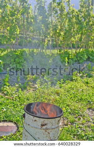Frost Damage Stock Images Royalty Free Images Amp Vectors