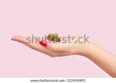 Cannabis bud in female hand with red fingernails isolated on pink background. Teenager drug abuse.  - stock photo