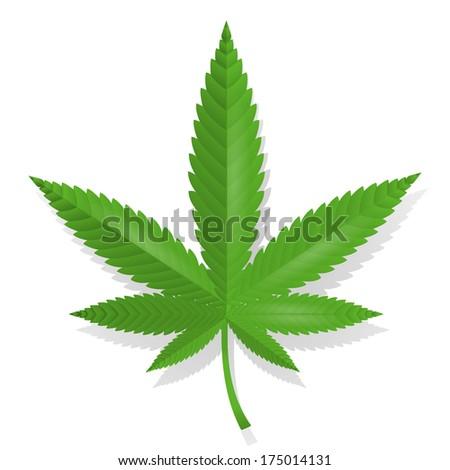 Cannabis leaf icon isolated  illustration - stock photo