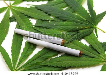 Cannabis leaf, marijuana over white background - stock photo