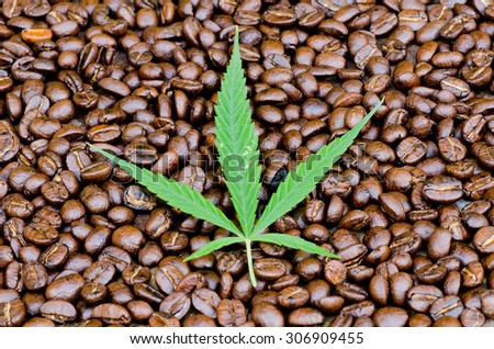 Cannabis leaf on Coffee beans background - stock photo