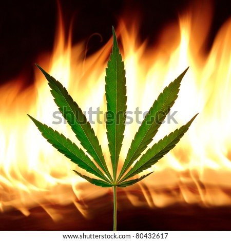 Cannabis leaf with fire on background - stock photo