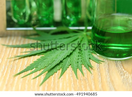 Cannabis leaves in laboratory for research
