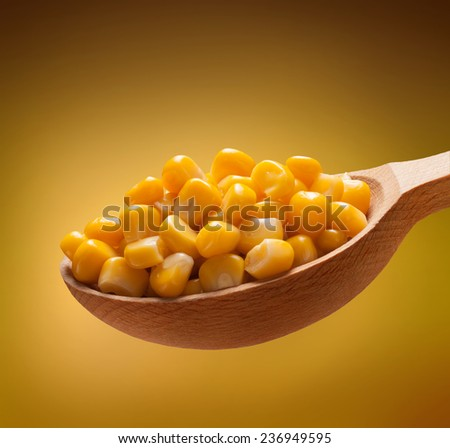Canned corn in a wooden spoon / kernels on wooden spoon isolated on golden background  - stock photo