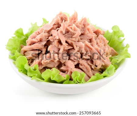 Canned tuna with green salad on white - stock photo