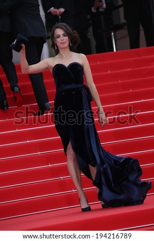 CANNES, FRANCE - MAY 21: Berenice Bejo attends the 'The Search' Premiere at the 67th Annual Cannes Film Festival on May 21, 2014 in Cannes, France. - stock photo