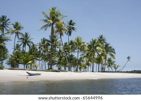 Canoe on a ocean beach with coconut palms, Bahia - stock photo