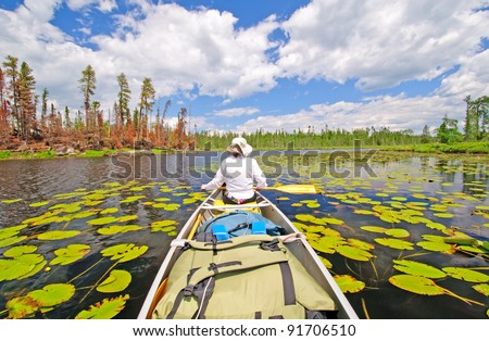 Canoer on Cross Bay Lake in the Boundary Waters - stock photo